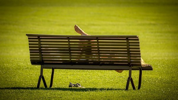 Park, Bank, Nature, Park Bench, Idyllic, Recovery