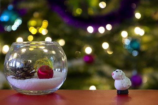 Christmas, Christmas Tree, Decoration, Advent, Xmas