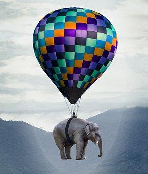 Elephant, Balloon, Flying, Weightless