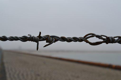 Barbed Wire, Barb Wire, Thread, Fence, Border, Barrier