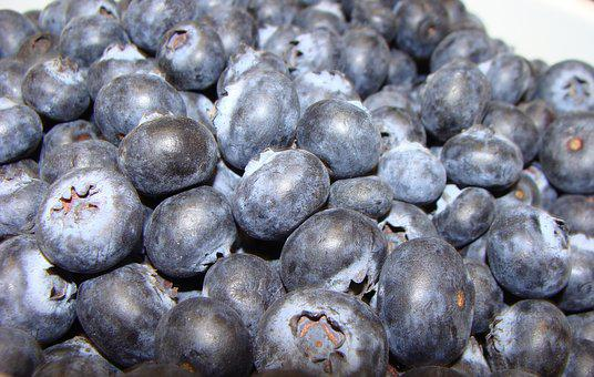 Blueberries, Blue, Fruit, Food, Healthy, Delicious