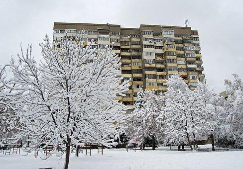 Fresh Snow, White, Flocked, Soviet, Bulgaria