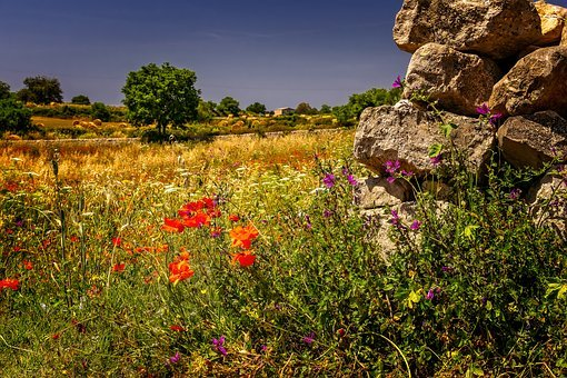 Landscape, Summer, Meadow, Field, South, Nature, Wall