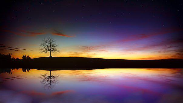 Tree, Lake, Twilight, Sunset, Autumn, Rest, Star, Night