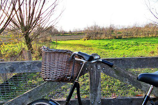 Fence, Bicycle, Countryside, Willow, Pasture, Outdoor