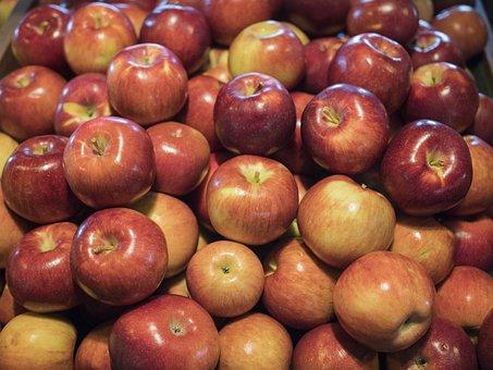 Apple, Fruit, Food, Ripe, Autumn, Harvested
