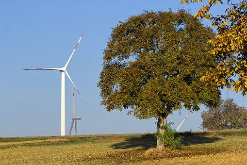 Pinwheel, Tree, Wind Energy, Sky, Landscape, Nature