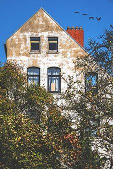 Hauswand, Facade, Wall, Plaster, House, Window