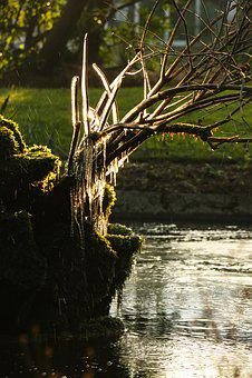 Garden, Cherbourg, Ice, Frozen, Winter, Water, Fountain