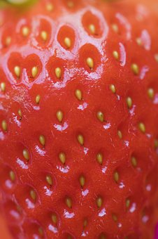 Background, Berry, Closeup, Delicious, Dessert, Detox