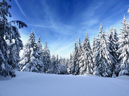 Vosges, Snow, Mountain, Winter, Blue, Sky, Landscape