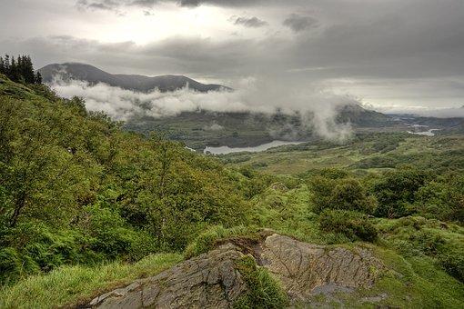 Deforestation, Forest, Killarney, Kerry, Ireland