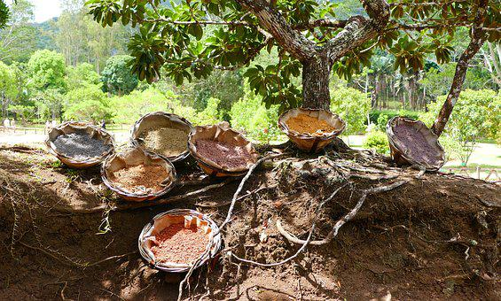 Mauritius, Chamarel, Seven Coloured Earth, Nature