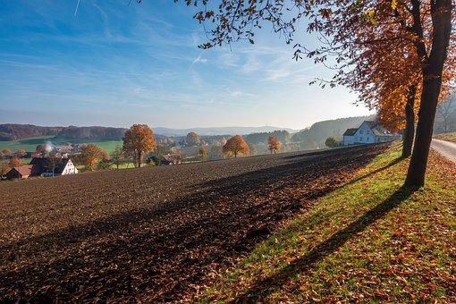Autumn, Landscape, Away, Trees, Mood, Romantic