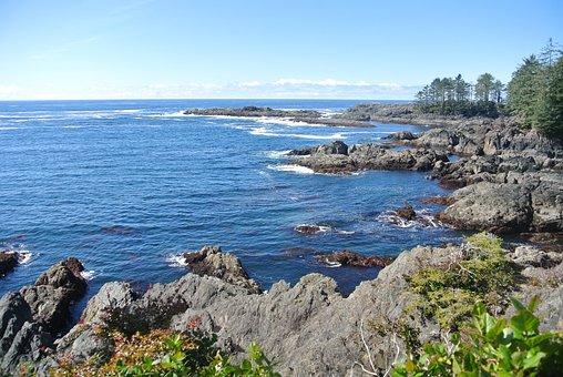 Ocean, Pacific, Sea, Water, Coast, Nature, Wave