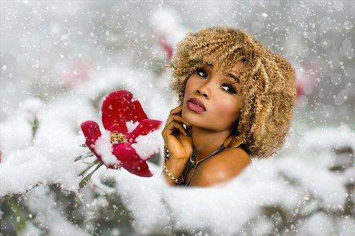 Winter, Season, Snow, Flowers, Red, Woman, Pretty