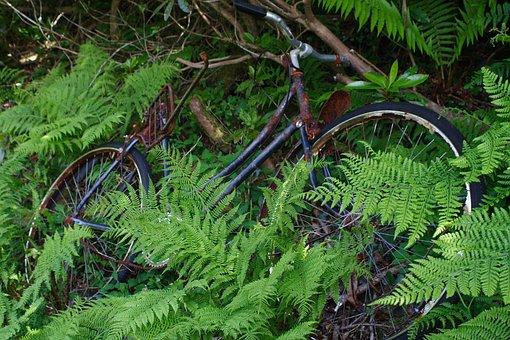 Old, Bicycle, Vintage, Bike, Wheels, Transport