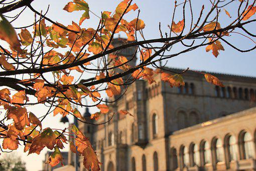 University Of Hannover, Autumn, Castle