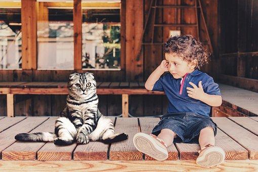 Child, Cat, Sit, Cute, Boy, Funny, Sweet, Friends