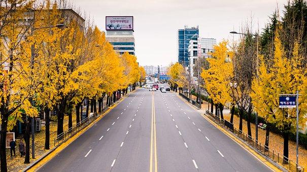 Autumn, City, Street, White, Fashion, Style, Young