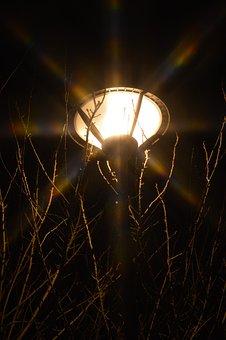 Light, Floor Lamp, Reverberatory, Lamp, Lighting