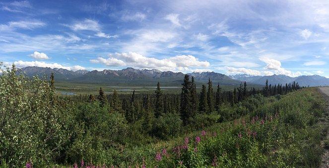 Alaska, Landscape, Nature, Scenic, Panorama, Wild