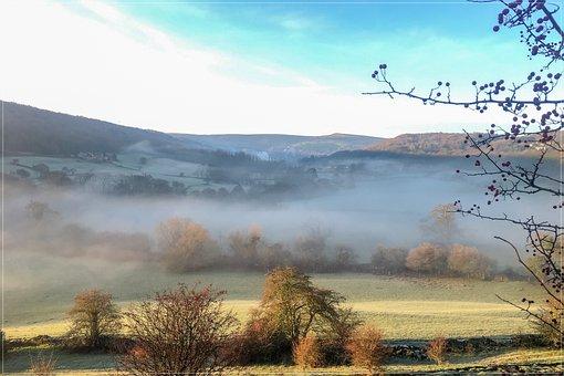 Autumn, Nature, Fog, Forest, Landscape, Leaves