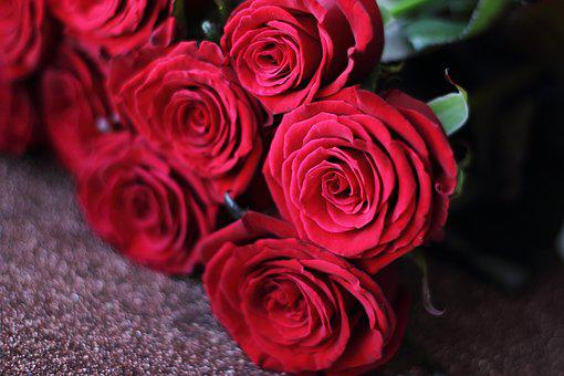 Red, Roses, Rose, Background, Flower, Bouquet