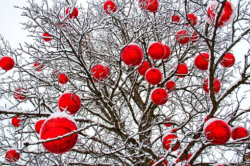 Winter, Tree, Balls, Red, Wintry, Cold, Nature, Snow