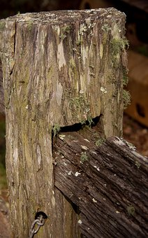 Fence, Old, Historic, Wooden, Joint, Detail, Wood
