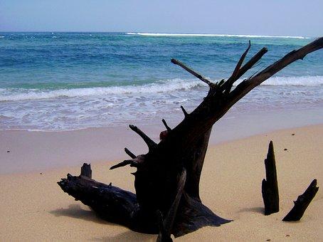 Pantai, Nliyep, Malang, Jawa Timur, Indonesia