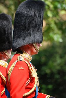 Man, Guard, Uniform, Red, Welsh Guard, Bearskin