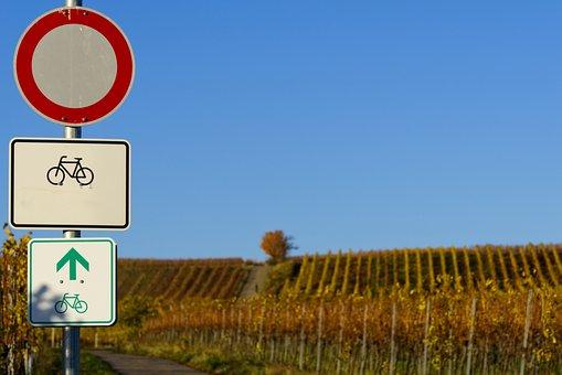 Bicycle Path, Shield, Characters, Symbol, Fall Foliage
