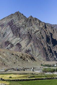Himalayas, Peak, Farm