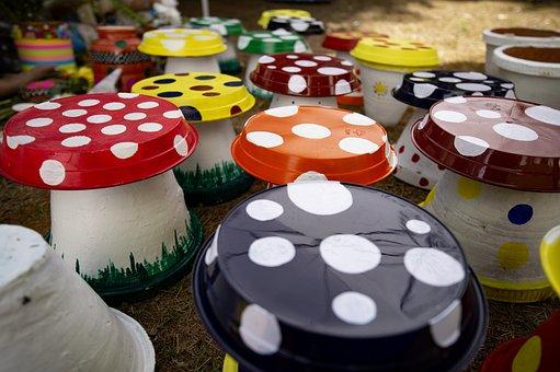 Colours, Mushroom, Art And Craft, Colorful, Ladybug
