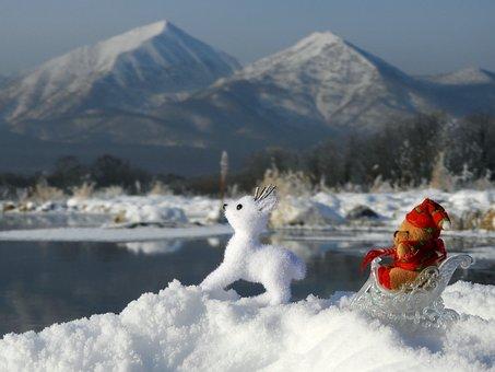 New Year's Eve, Christmas, Holiday, Toys, Deer, Bear