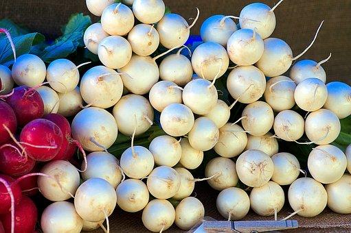 Harvest White Radishes, Radish, White, Farmers, Market