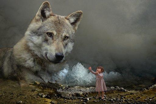 Fantasy, Wolf, Child, Nature, Animal, Mysterious, Scene