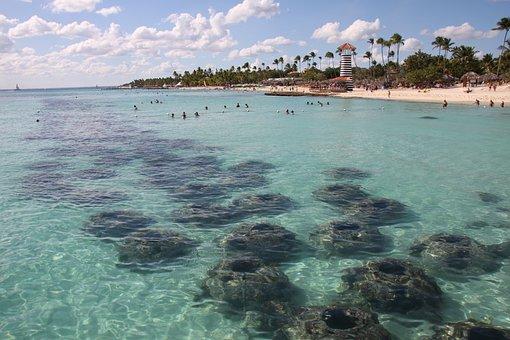 Dominican Republic, Island, Beach, Sea, Travel, Sand