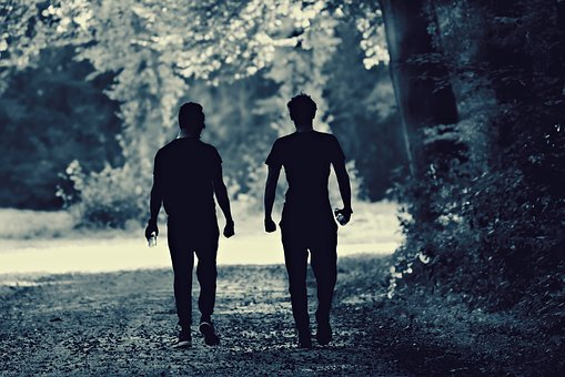 People, Man, Walking, Road, Forest, Together, Two, Pair