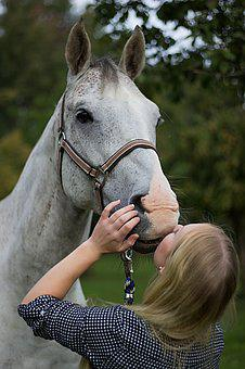 Woman, Young, Standing, Horse, Stallion, White, Kiss