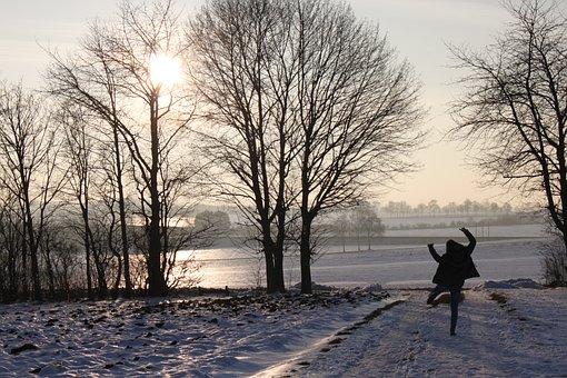 Nature, Winter, Tree, Landscape, Wintry, Idyllic