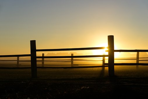 Sunrise, Fog, Fence, Batten, Wood, Autumn, Cool, Mood