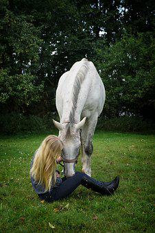 Woman, Young, Sitting, Horse, Stallion, White, Girl
