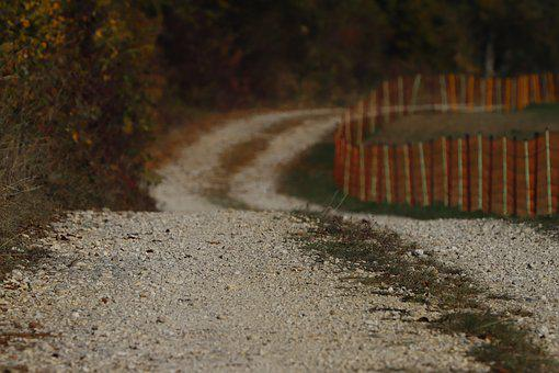 Away, Path, Nature, Landscape, Lane