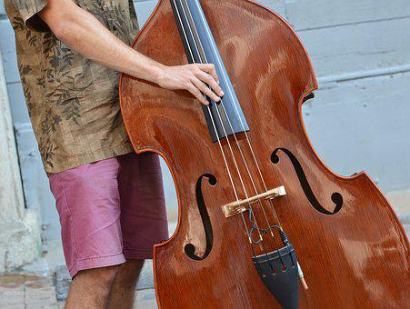 Musician, Double Bass, Instrument, Music, Strings