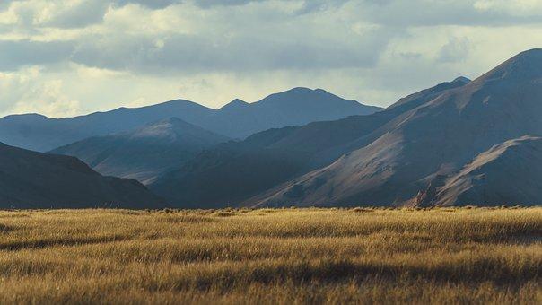 Himalayas, Farm, Grass, Ladakh