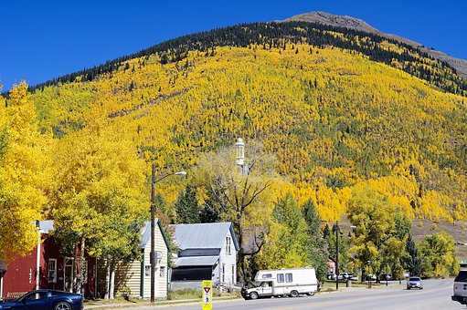 Autumn In Silverton, Aspens, Autumn, Colorado, Forest