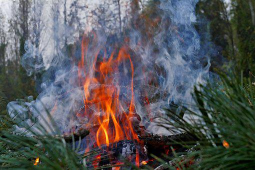 Fire, Smoke, Burning, Burn, Forest, Nature, Flame, Pine