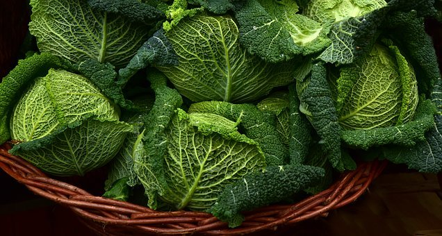 Savoy, Kohl, Savoy Cabbage, Vegetables, Healthy